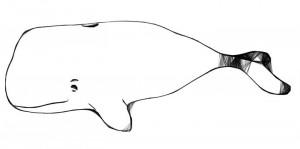 aug-10-web-whale.jpg