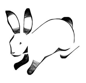 aug-10-web-bunny.jpg