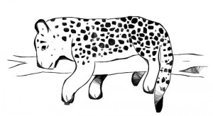 Aug-11-web-jaguar.jpg