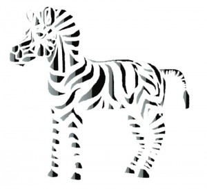 Aug-13-zebra.jpg