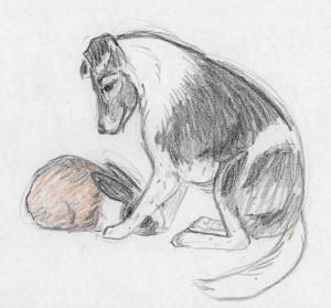 aug-27-crayon-pets.jpg