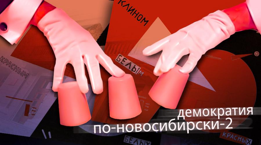 Демократия по-новосибирски-2