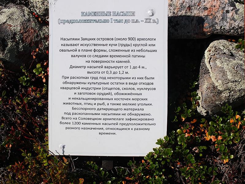 Соловки2014июль-213