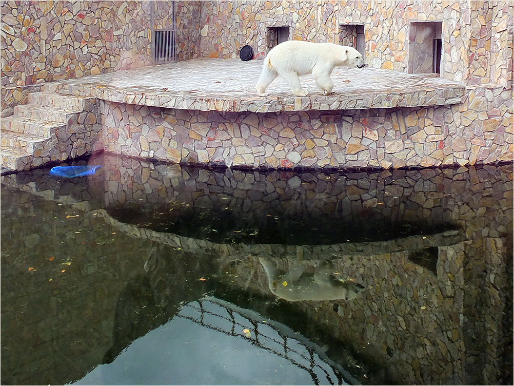 ЛенинградскийЗоопарк