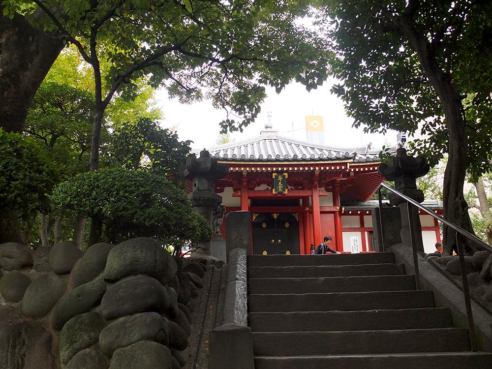 Япония-114