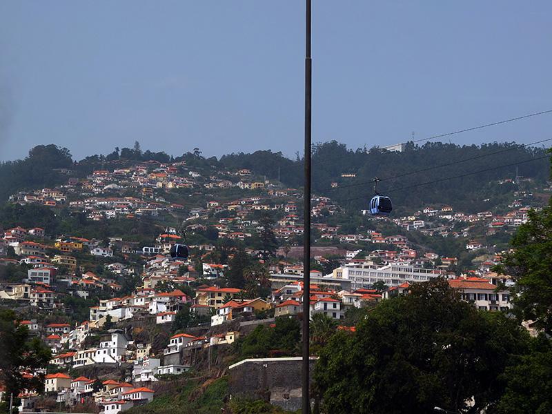 Мадейра-217