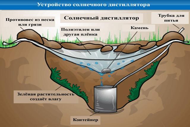 Как в пустыне найти воду02