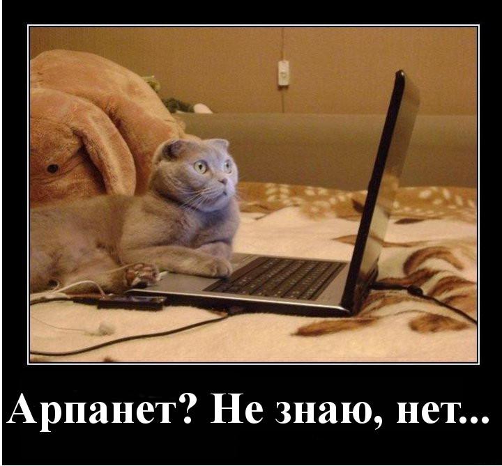 Арпанет, не знаю, нет..
