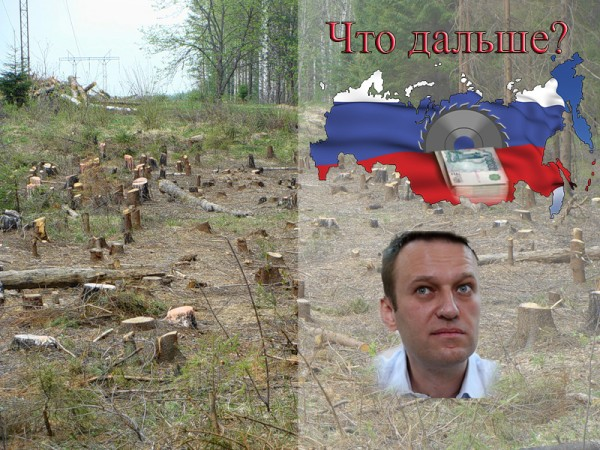 Алексей Навальный следующий Президент России?