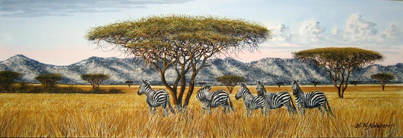 Zebras-in-High-Grass