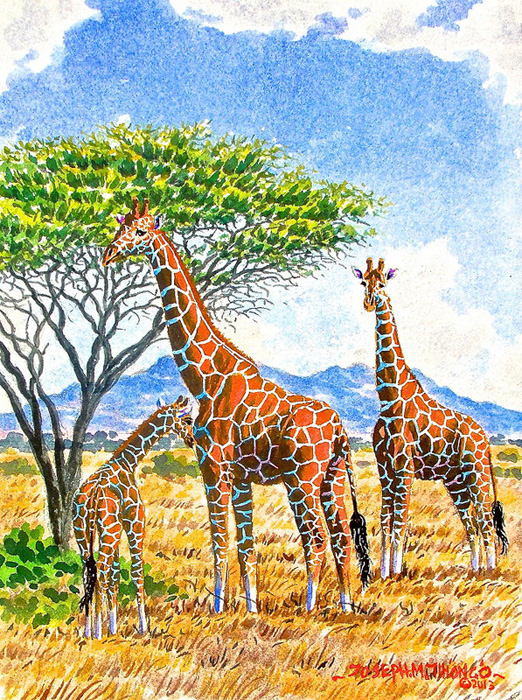 giraffes-with-baby