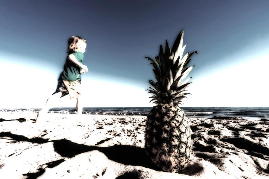 beach-1850963_1920_1.jpg