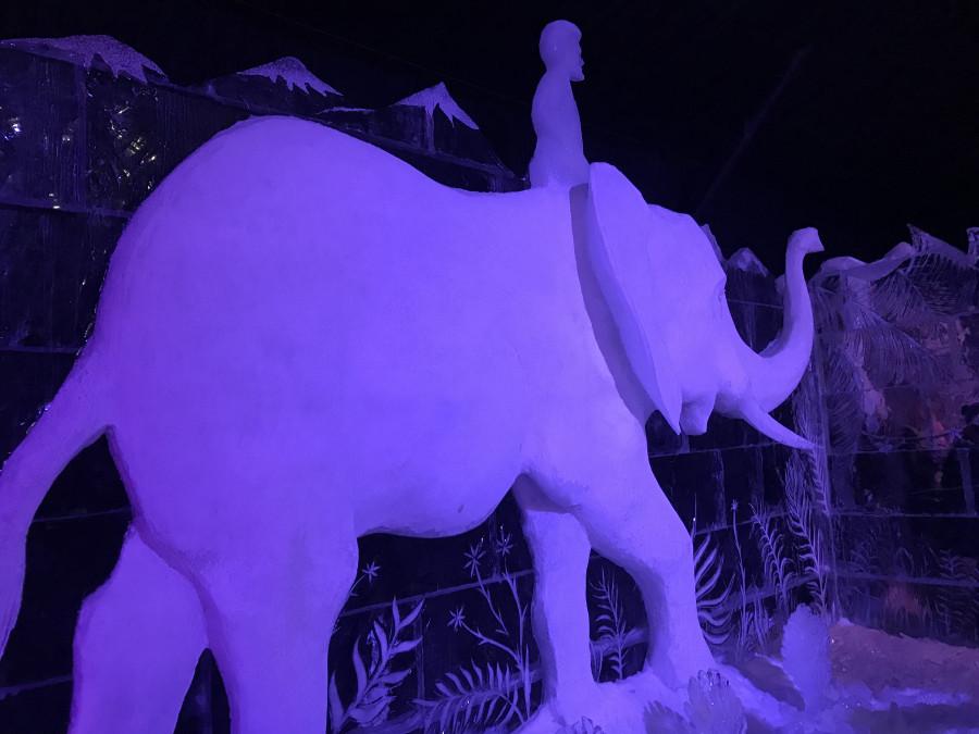 Ледяные скульптуры в Петропавловке