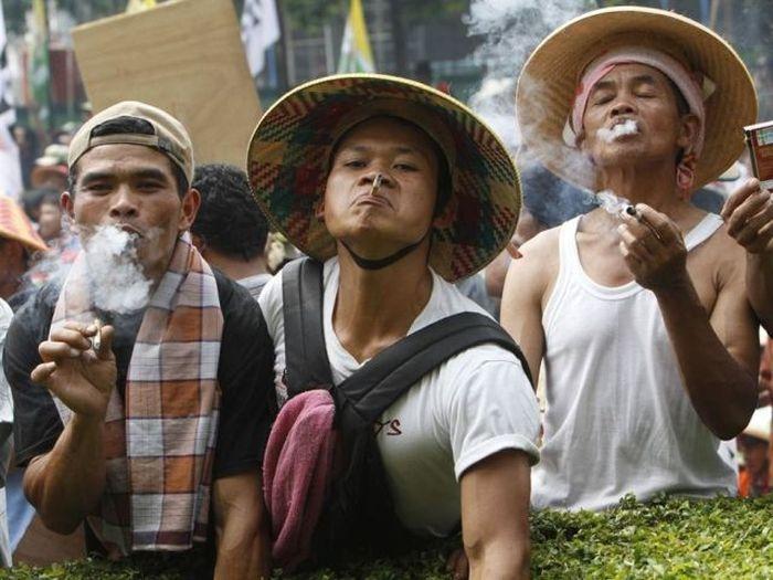 польза от курения