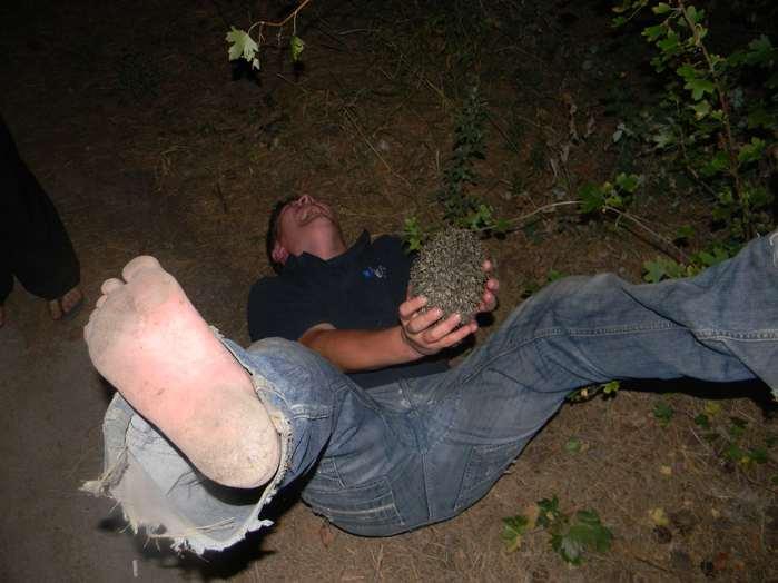 пьяный с ежиком