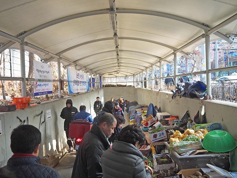 seol, сеул, корея, рыбный рынок, Noryangjin