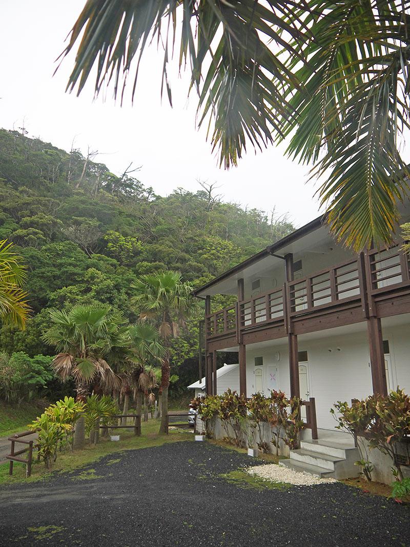 япония, остров Амами, гостиница, Native Sea