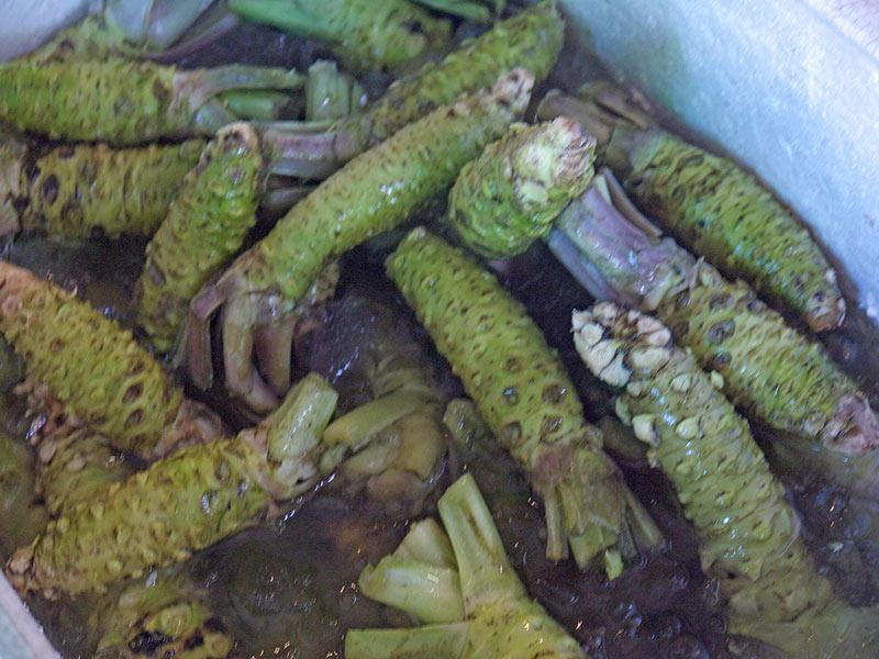 корень васаби, япония, рынок, цукидзи