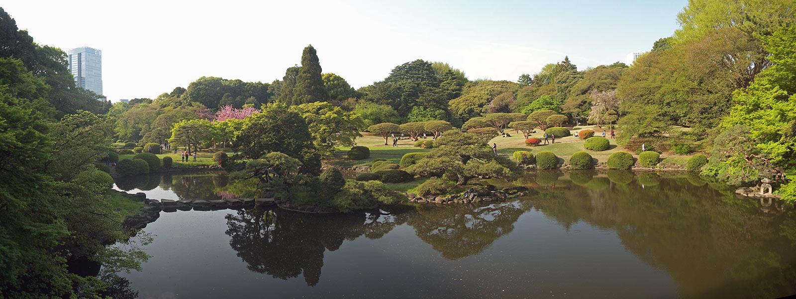 парк, япония, японский сад, Синдзюку, токио, shinjuku gyoen