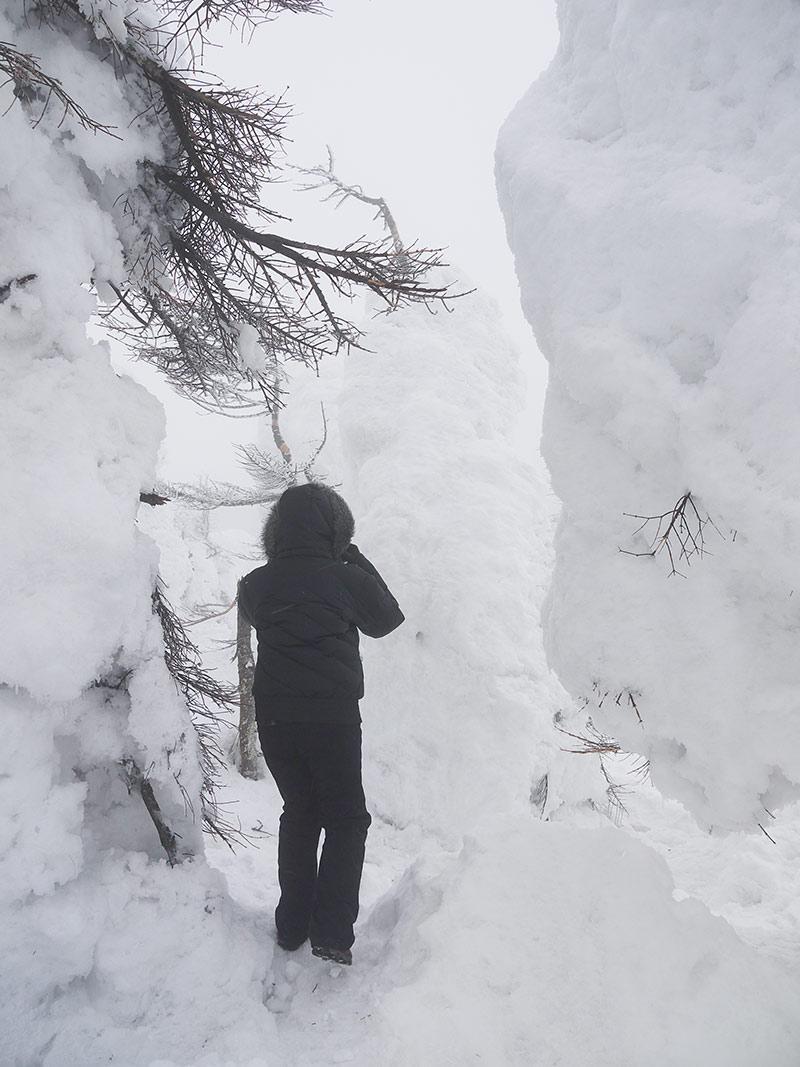 снежные монстры, Зао, snow monsters, Japan, Япония, Zao