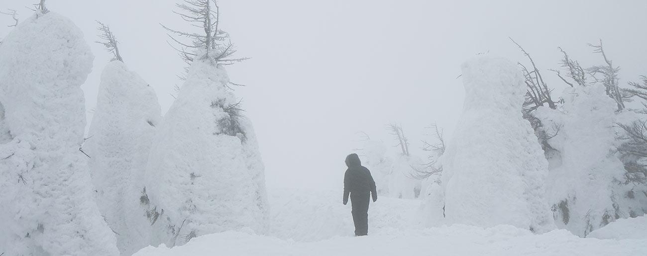 снежные монстры, Зао, Zao