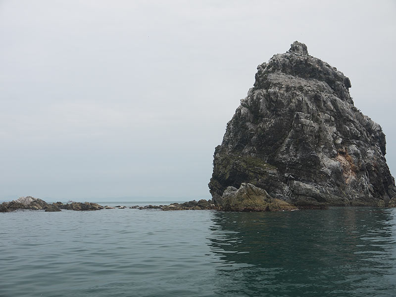 остров Путятина, приморье, Кекуры пять пальцев, скалы, море, тюлени, ларги