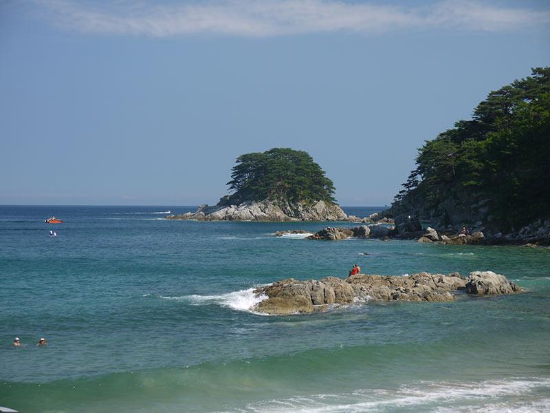владивосток,бухта витязь, остров томящегося сердца, побережье, берег, могильные сосны