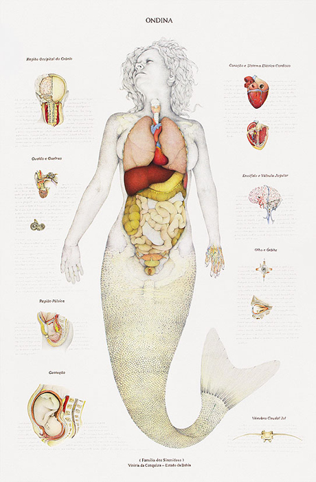1-ondina-ondine-mermaid