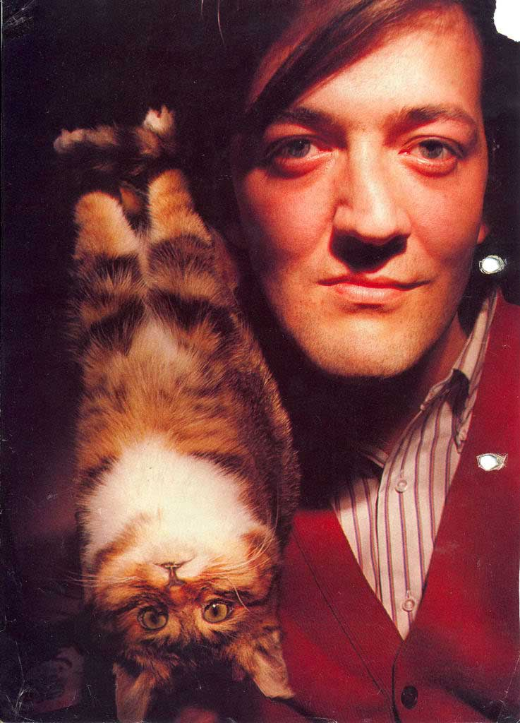 Stephen-Fry-with-a-cat