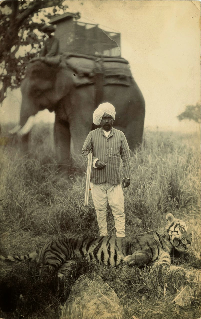 British Hunting in India, ca. 1920s (6)