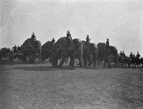 Elephant_Battery-_pg_160_-_India_under_royal_eyes-_Henry_Francis_Prevost_Battersby