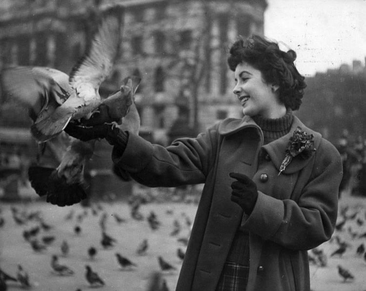 Elizabeth-Taylor-1948