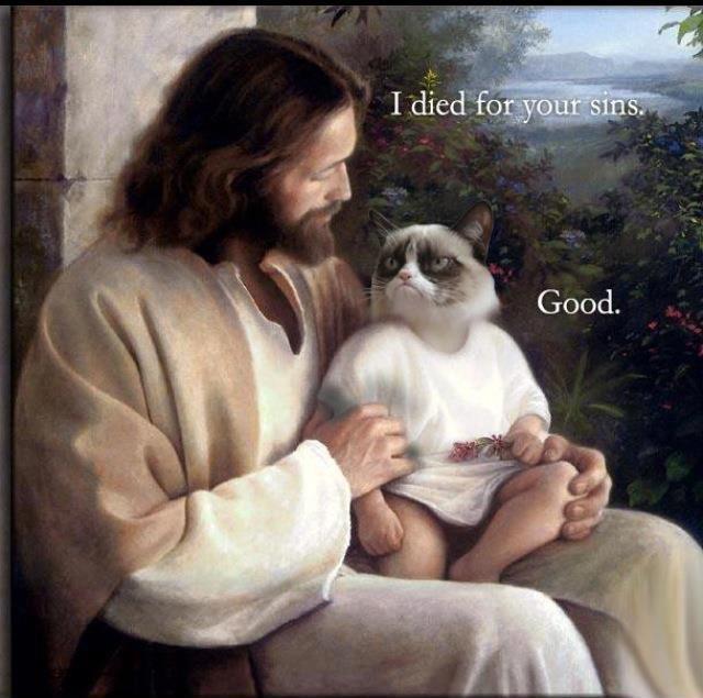 640x635xJesus_died_for_you_sins._Grumpy_cat_good_.jpeg.pagespeed.ic.yMTBw8fiu_