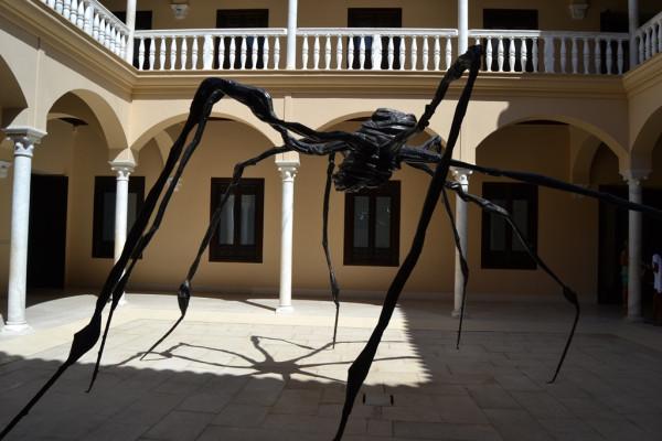 zirnekl