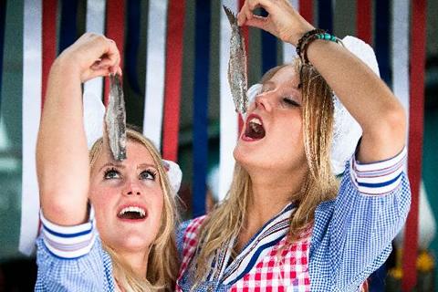 Фестиваль селедки в Нидерландах