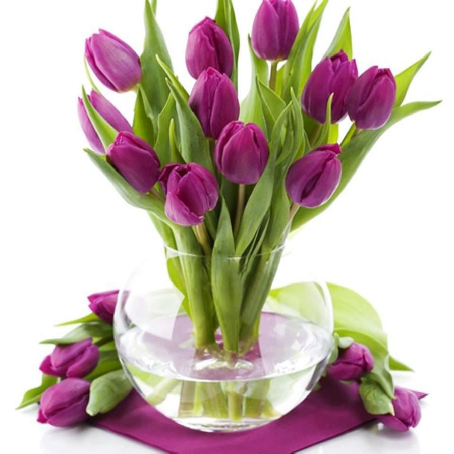 flowers_tulips-21