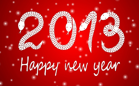 2013-happy-new-year