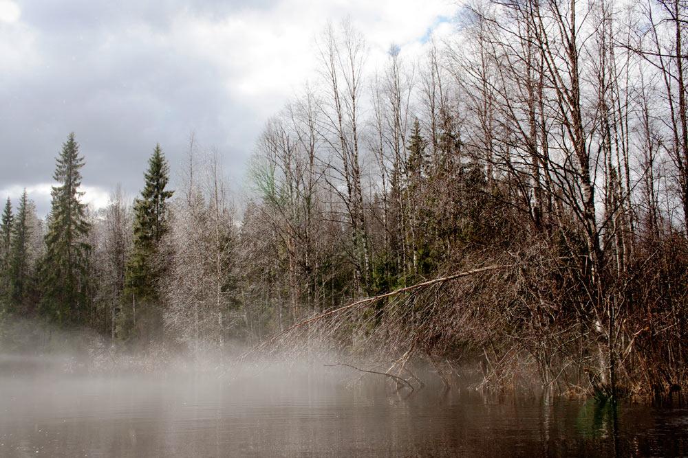 Холодный поход по реке Тохма. Фотоотчет