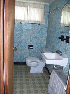 Basement Bathroom Before