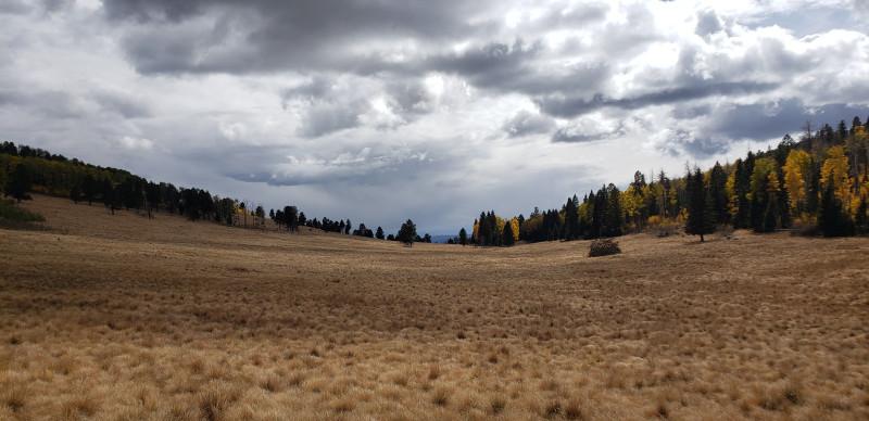 На следущий день мы отправились любоваться золотой осенью, которая в этом году не подкачала. Место, где горизонт всегда завален.