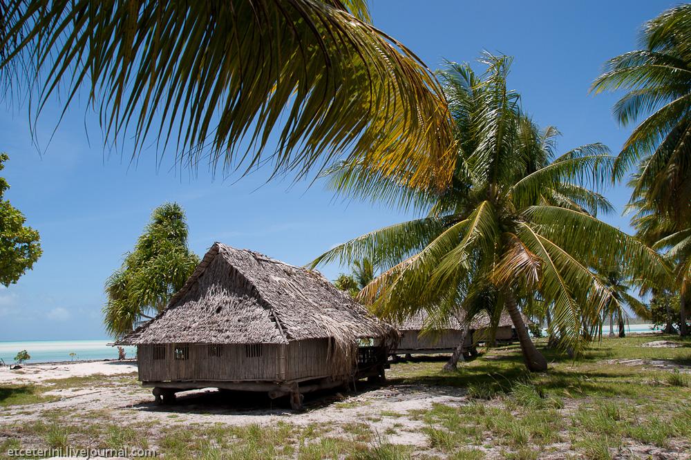 Картинки необитаемый остров с домиком