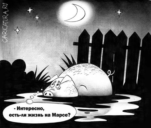 Сергей Корсун - Свин