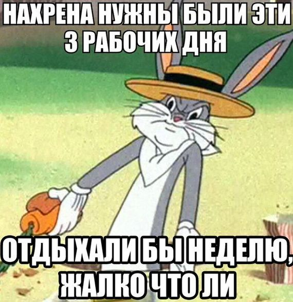 1456408498139162938