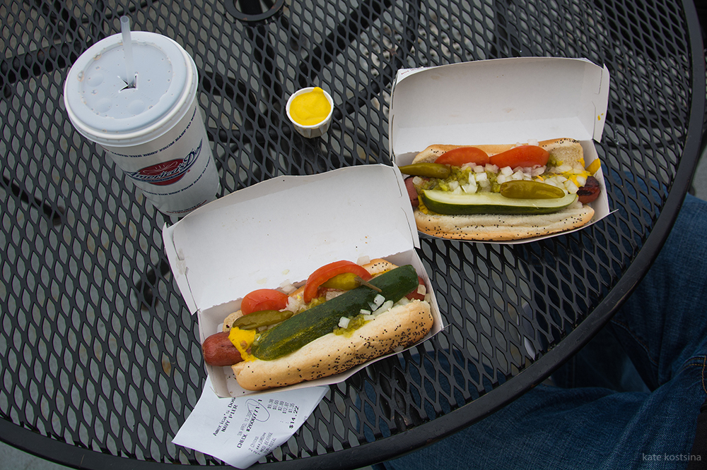 chicago hot dog kostsina