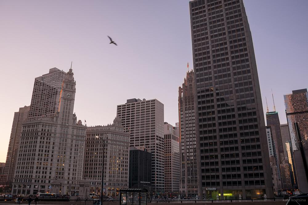 evening chicago kostsina