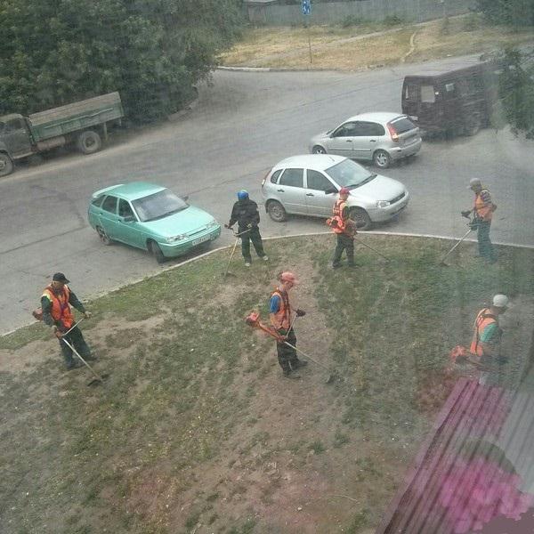 газонокосильщик-не-один-лето-под-окном-2194444