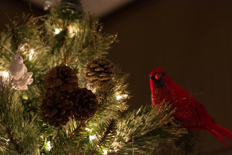 christmas kostsina (1)