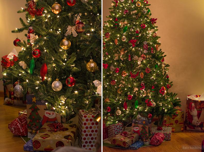 kate kostsina christmas (30)