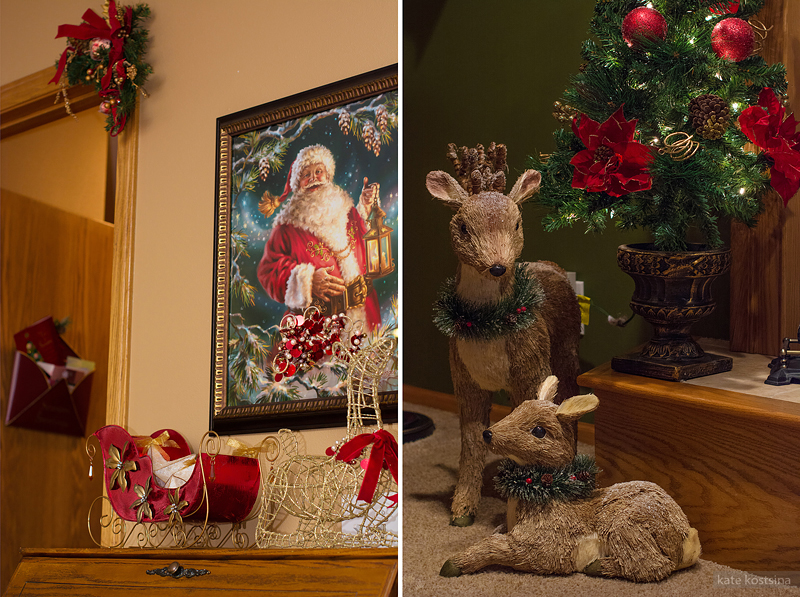 kate kostsina christmas (9)