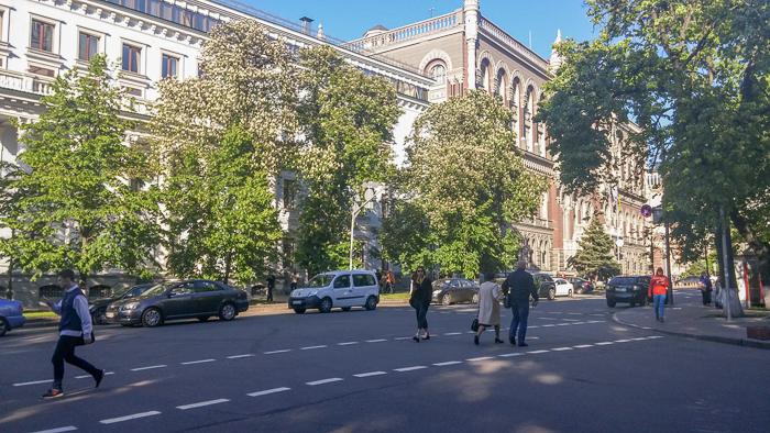 kiev streets kostsina (68)